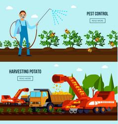 Potato cultivation flat compositions vector