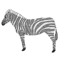 Cute pattern zebra vector image