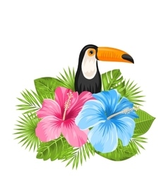 Beautiful Exotic Nature Background with Toucan vector image