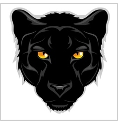 Black Panther - on white background vector image vector image