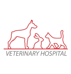 veterinary hospital vector image vector image