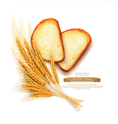 slices of sliced bread loaf lying isolation vector image