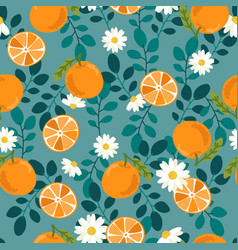 cute hand draw orange fruit and slice on green vector image