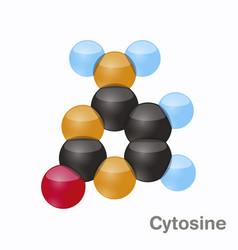 Cytosine c pyrimidine nucleobase molecule base vector