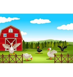Farmland vector
