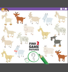 Find two same goats educational game for children vector