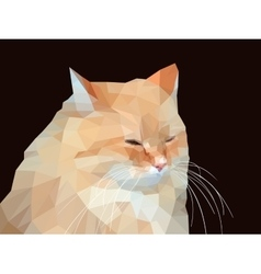 Polygonal a red cat vector