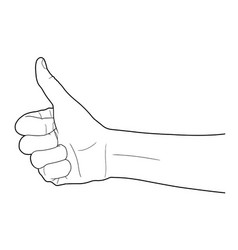 line of group of human hands showing thumbs up vector image