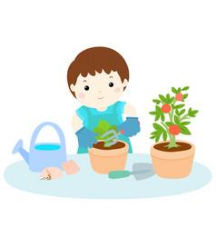 boy planting tree cartoon vector image vector image