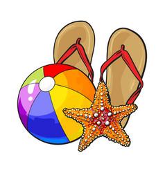 Flip flops starfish and inflatable beach ball vector
