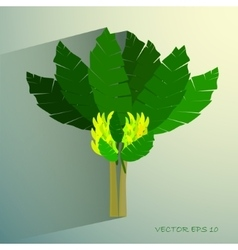 Ecological Concept A Beautiful Tropical Banana vector image
