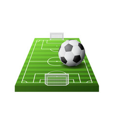 3d soccer field with green grass goals and white vector image