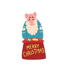 bearded pig character dressed in warm bright vector image