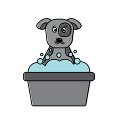 cartoon dog bathing foam clean vector image