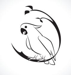 Cockatoo vector image