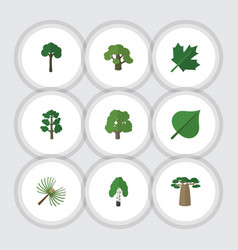 Flat icon ecology set of timber rosemary hickory vector