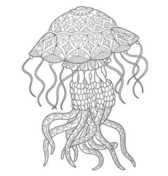 jellyfish adult coloring page vector image