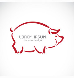 Pig design on white background farm animals easy vector