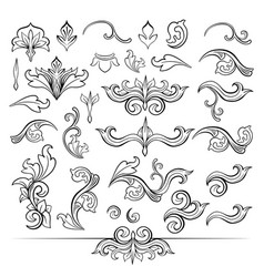 set of isolated black sketches of floral vector image