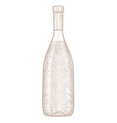 Bottle of wine hand drawn sketch vector