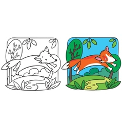Little red fox coloring book vector image vector image