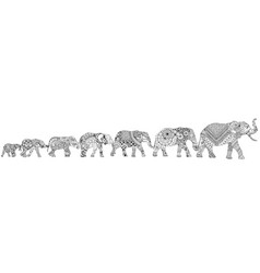 7 elephants on a white background vector image vector image