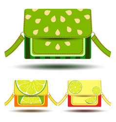 woman clutch set poster isolated on white vector image vector image