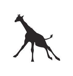 Giraffe silhouette vector image