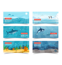 Ocean with scientific information vector
