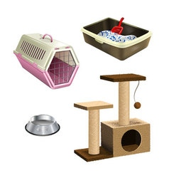 Set of pet shop accessories vector