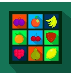 Fruits and berries flat icons with long shadow vector image
