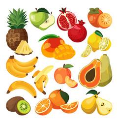Bananas oranges pineapple tropical fruits vector