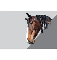 brown horse head on a grey background vector image