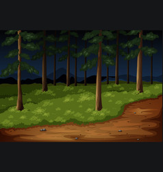 Forest scene with trees and trail at night vector