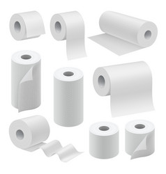 realistic paper roll mock up set vector image