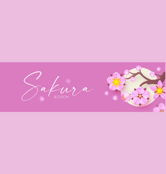 sakura blossom and moon cute pink cherry flowers vector image