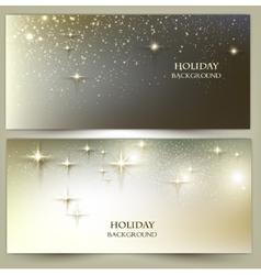 Set of Elegant Christmas banners with snowflakes vector image