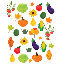 vegetables harvest autumn season pattern vector image