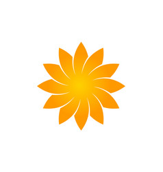 Wealth management sun flower vector