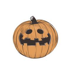 pumpkin halloween pumpkin vector image vector image