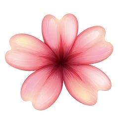 A blooming five-petal flower vector