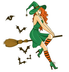 Beautiful witch sitting on the broom vector