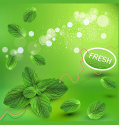 Green background with fresh min vector