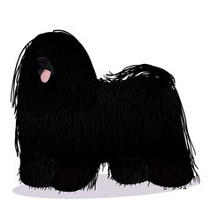 puli dog cartoon black vector image