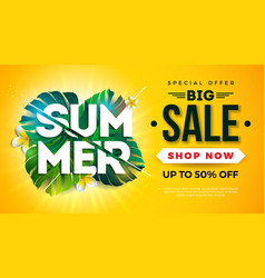summer sale design with exotic palm leaves vector image