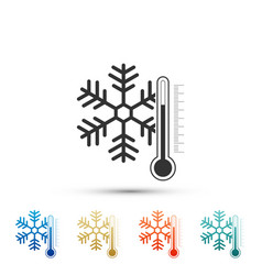 Thermometer with snowflake icon isolated vector