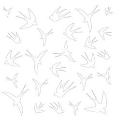 swallows flight vector image vector image