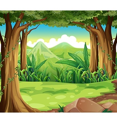 A green forest across the high mountains vector