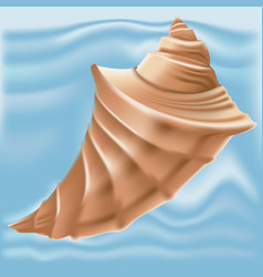 brown seashell isolated on background vector image