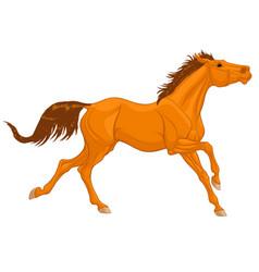 Chestnut thoroughbred horse vector
